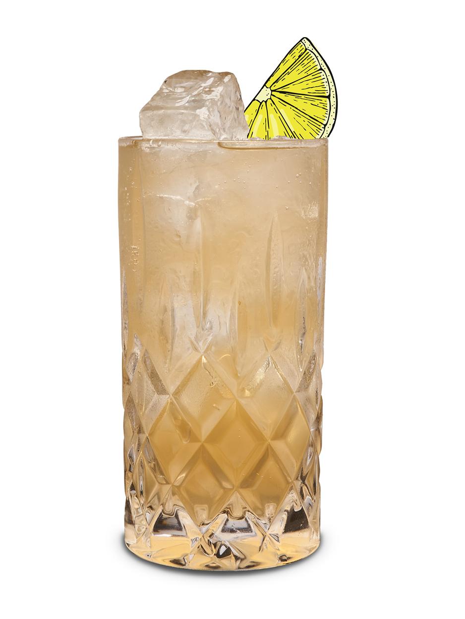 Ingwerer Ginger Gin Fizz